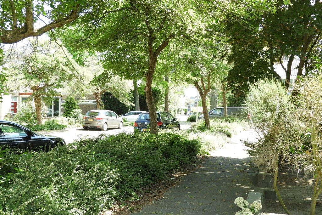 In leuke straat met veel groen/bomen, op loopafstand van het stadscentrum gelegen, uitgebouwde eengezinswoning met inpandige berging, voortuin en zonnige achtertuin op het zuidwesten voorzien van achterom. STARTERS OPGELET! VRAAGPRIJS € 169.000,- K.K. MOOIE, LEUKE STRAAT NIET VER VAN HET STADSCENTRUM! Bouwjaar: circa 1962. Perceelsoppervlakte: circa 144 m2. Totale inhoud: circa 410 m3. Woonoppervlakte: circa […]